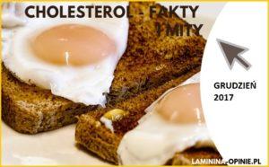 cholesterol fakty i mity laminina opinie