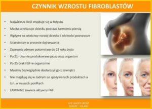 Czynnik wzrostu fibroblastów (FGF2)