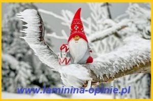 Życzenia świąteczne - laminina opinie